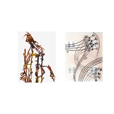 Neuronen & Kapillaren